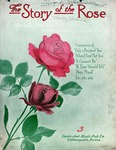 The Story Of The Rose