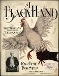A Black Hand by Robert Hoffman