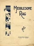Meddlesome Rag