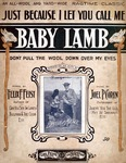 Just Because I Let You Call Me Baby Lamb : Don't Pull The Wool Down Over My Eyes