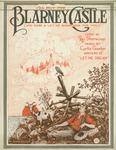 I'll Buy the Blarney Castle