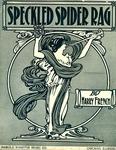 Speckled Spider Rag