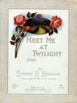 Meet Me At Twilight