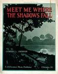 Meet Me Where The Shadows Fall