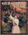 Neath the Old Cherry Tree, Sweet Marie