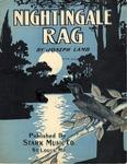 Nightingale Rag (Ragtime Nightingale)