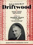 Just A Little Bit O' Driftwood