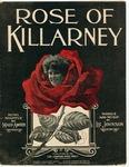 Rose Of Killarney