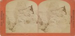 American Fall and Great Ice Bridge of 1879