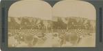Senator Chauncey M. Depew Addressing the Multitude, Syracuse State Fair, 1903.