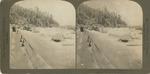 Jack Frost's Work on Goat Island, Niagara Falls, N.Y.