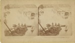View No. 2 of R. R. Disaster at Millford, N. J. Oct. 4th 1877.