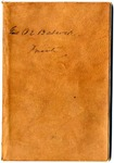 Diary of Orville E. Babcock, January-March 1867