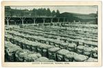 Cotton Warehouse