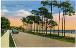 Scenic Highway, Mississippi Gulf Coast, Between Biloxi and Gulfport-49
