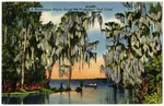 A Picturesque Bayou Along the Mississippi Gulf Coast