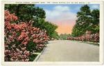 Euclid Avenue,