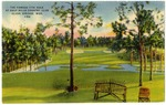 The Famous 17th Hole At Gulf Hills Country Club Ocean Springs. Miss 152